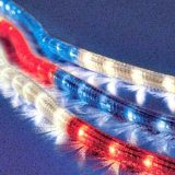 Red, White and Blue Rope lighting